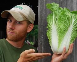 Vanna Streit with Chinese Cabbage