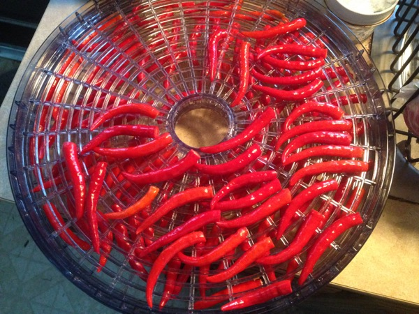 Ground Thai Peppers, Dehydrator