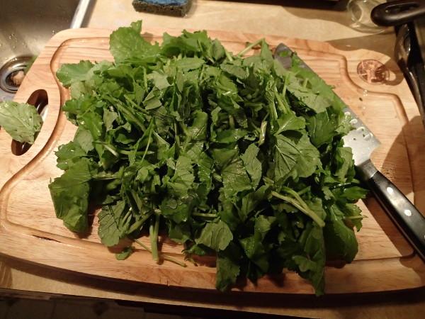 Risotto chopped broccoli raab