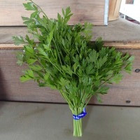 Parsley (what we grow)