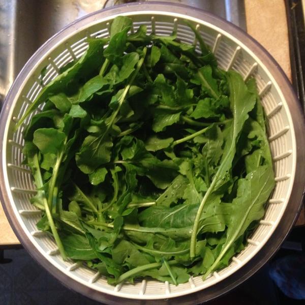 $6 Arugula Salad, Spinner