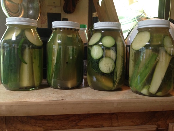 Dill Pickles, Complete