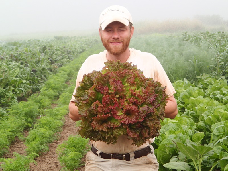 Stefan Holds a Lettuce