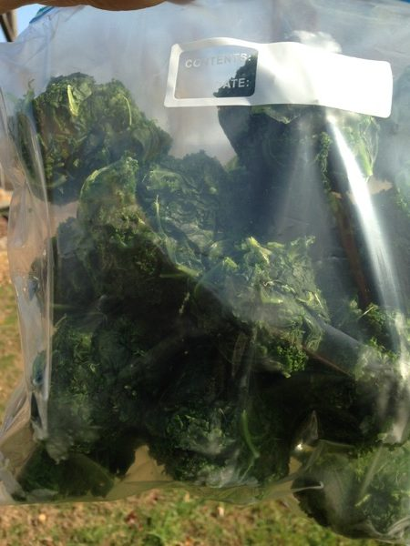 blanched-kale-frozen-in-bag